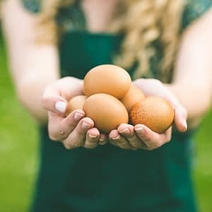 Não coma ( pouco) ovo ! Entenda o que o seu consumo pode lhe causar ;)